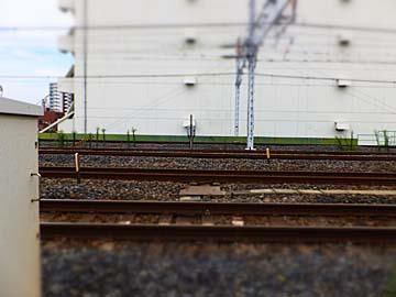 列車が来たときは撮りそびれた