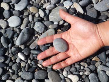 まんまるの石、いろいろあって可愛い!